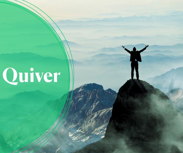 Como a Quiver se tornou uma gigante no mercado de seguros